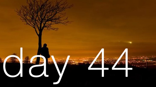 day-44